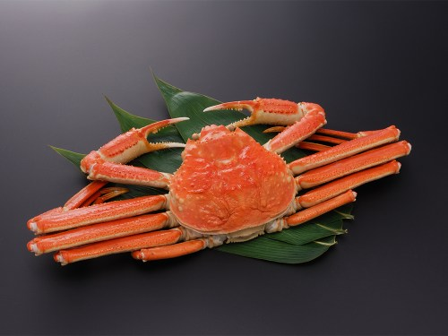 SEIKO GANI - Snow Crab