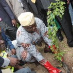 Lagos flags-off 2015 Tree Planting exercise