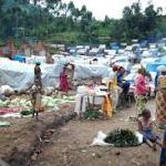 NEMA confirms 1.9m IDPs in North East