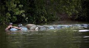Illegal oil activities in the Niger Delta
