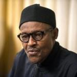 VCs sack: CSOs withdraw lawsuit over Buhari's apology