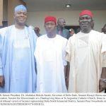 (Photonews) Senators Saraki, Ekweremadu, others celebrate with Senator Nwaoboshi