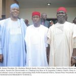 (Photonews) Senators Saraki, Ekweremadu, others celebrate with Senator Nwaoboshi