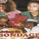 Nollywood as handshake across the Niger By Uzor Maxim Uzoatu