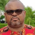 Imo North by-election: Okewulonu emerges PDP Senatorial candidate