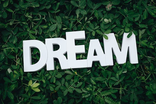 Quotes on Dreaming