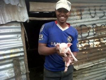 photo of pig raising project in kenya