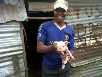 photo of pig raising project in kenya
