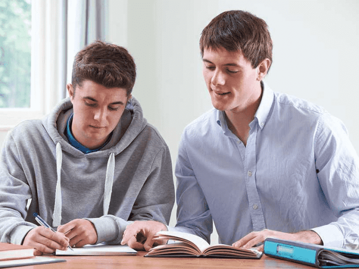 private tutors can understand your kids better than you