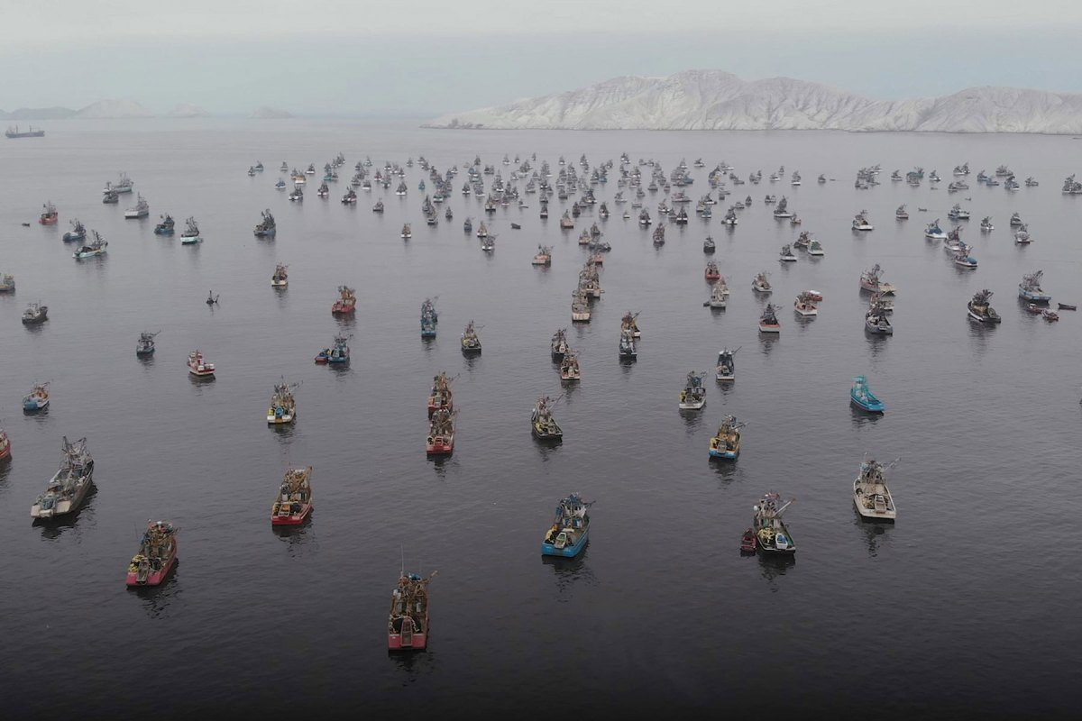 Drone Footage of Peruvian Fishing Boats