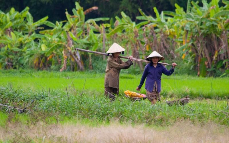 Widening wealth gap threatens Vietnam's stability