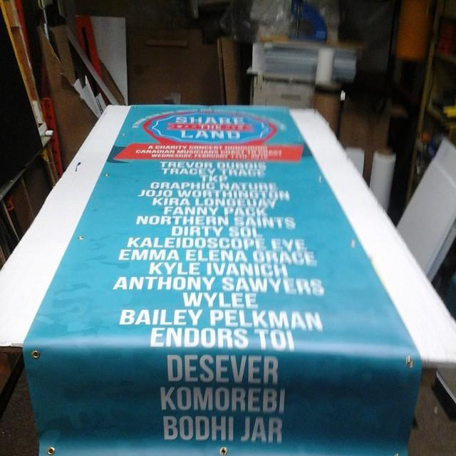 Banner 3' x 9'