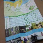 Tourist Brochures