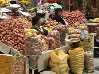 Potatoes - Amazing Here!