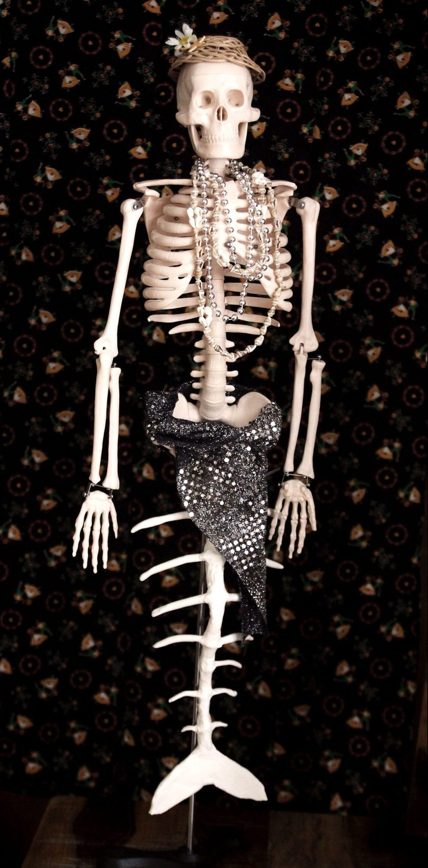 Science of Mermaids Birthday Party: Skeleton Makeover
