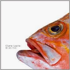 Clara Luzia We Are Fish