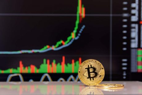"""ARK Invest CEO: Bitcoin In """"Capitulation Phase,"""" Still Set For $500k"""