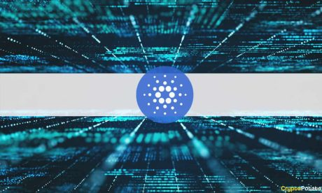 Grayscale Report Shows The Good, The Bad, And The Ugly Of The Cardano Network