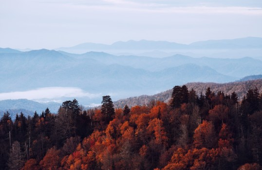 Great Smoky Mountains National Park looks like a red sea in the fall.