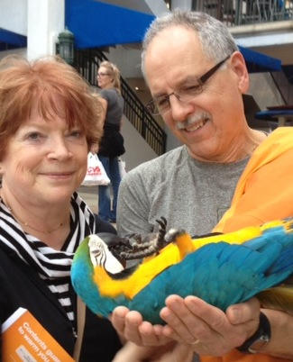 Member John L.'s entry in our Shoot for the Stars contest shows this parrot from Ft. Lauderdale taking a nap.