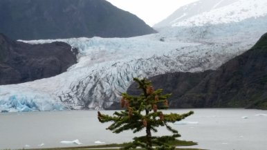 Angela V. - The magnificent Mendenhall Glacier in Juneau, Alaska.