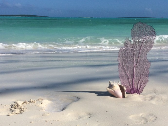 Member Bob R. encapsulates the beauty and serenity of the Bahamas with this photo.