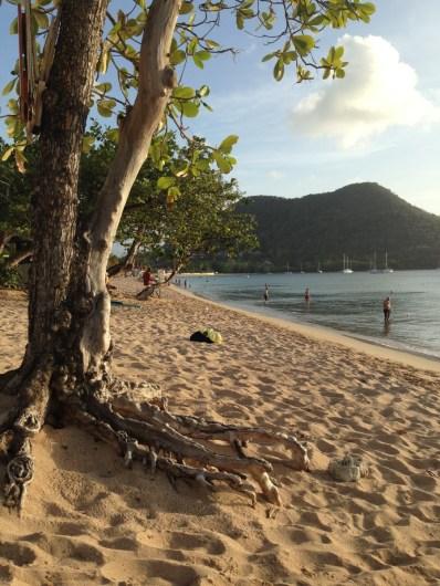 Beach outside of Bay Garden Beach resort, courtesy of member James P.