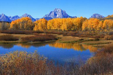 Member Joseph M. sent us this wonderful scene of Mount Moran with fall colors (Grand Teton National Park, Wyoming).