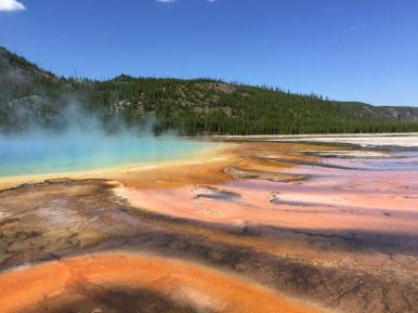 Colorful sulfuric springs at Yellowstone National Park. - Member Timothy P.
