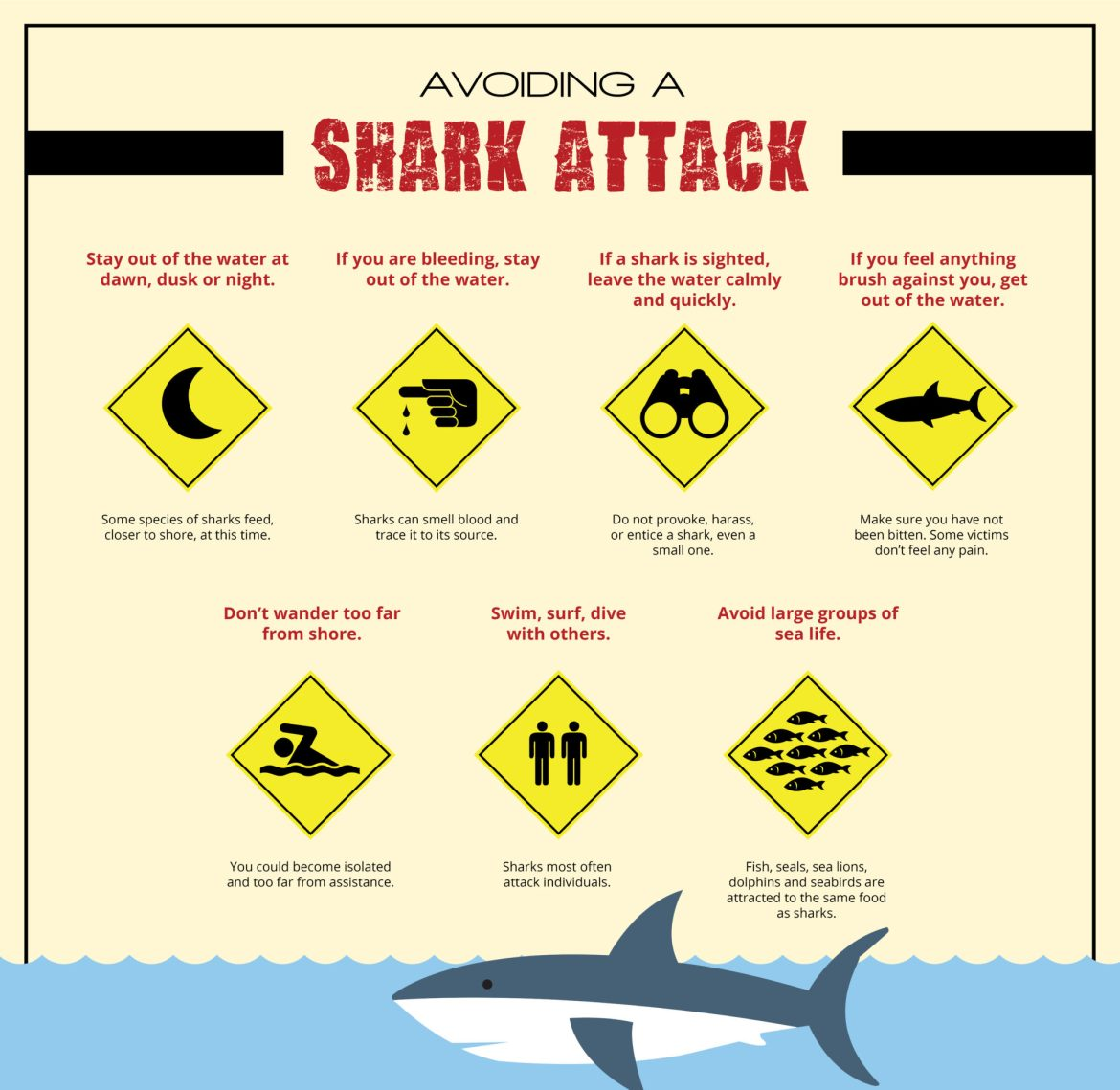 shark-attack-infographic