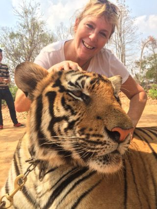 global discovery vacations tiger.