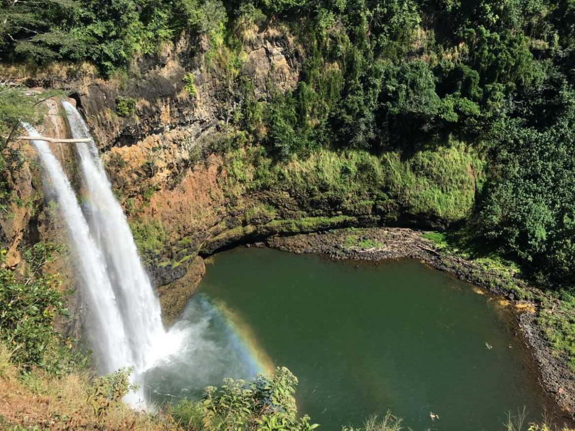 """Beautiful Opaekaa Falls on Kauai, one of many waterfalls you will see on the island."" - Member Charles M."
