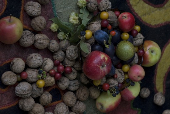 Selection of wild fruits and nuts harvested from the Kyrgyzstan forest. Credit: Jason B. Smith
