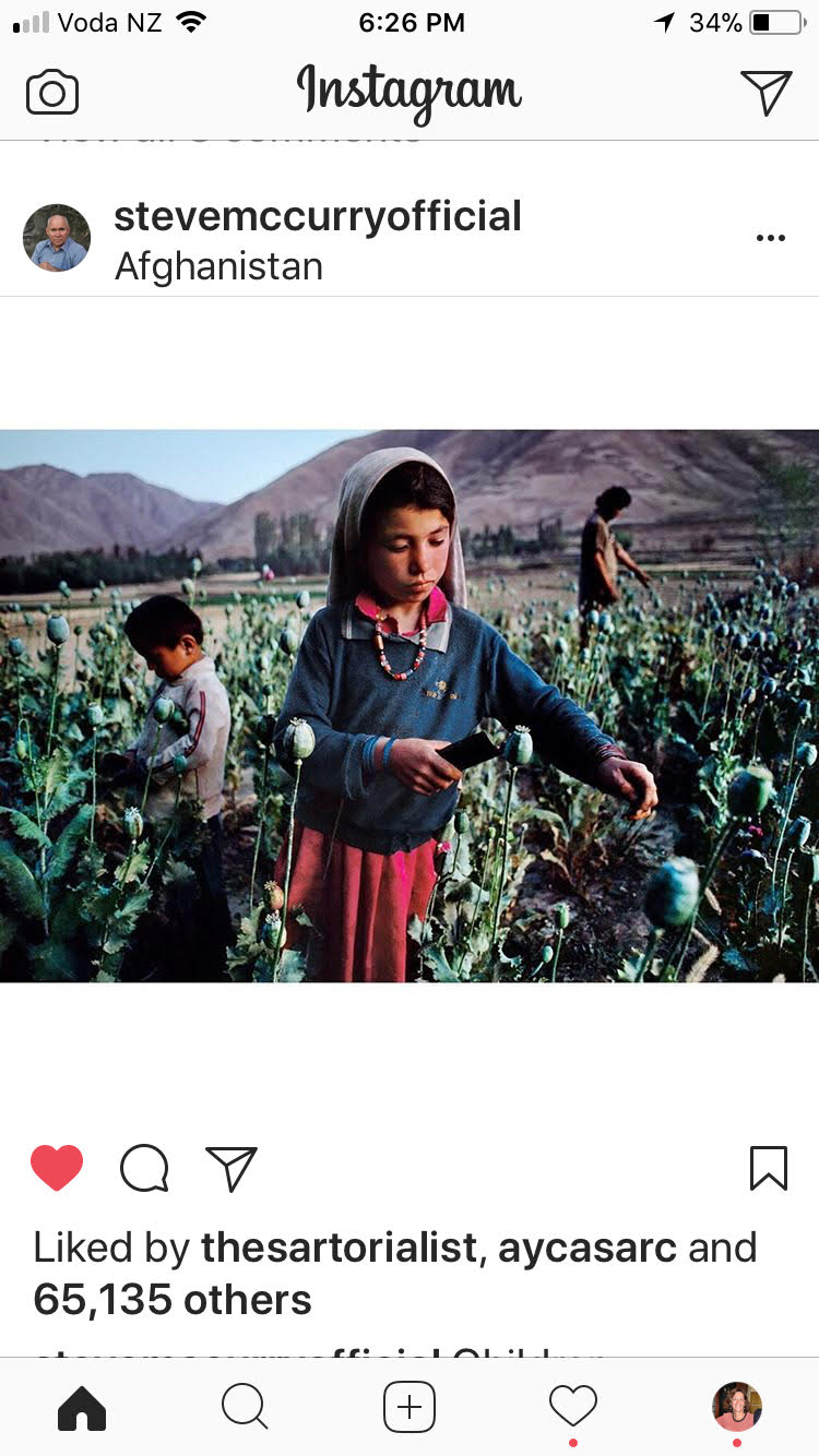 Afghani children harvesting poppies for Opium production