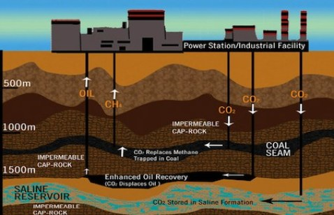 An infographic describing carbon capture and storage