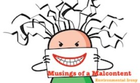 Musings of a Malcontent: Environmental Irony in an Imperfect (but humorous?) World
