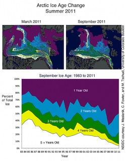 Arctic sea ice - 2011