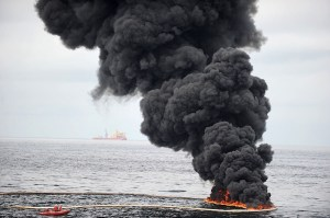 BP Oil Spill - what's happened after three years? A recent report by the National Wildlife Federation found that the three-year-old BP spill is still having a serious negative effect on the ecology of the Gulf of Mexico and its wildlife populations