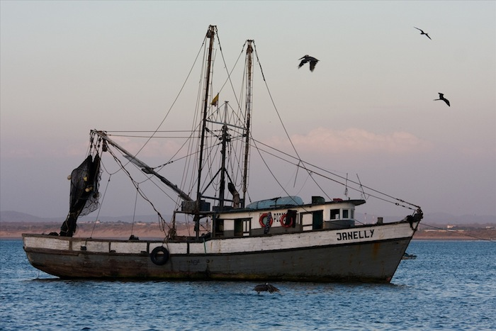 Hawaii's Fishermen: Scapegoats for Forces Outside their Control