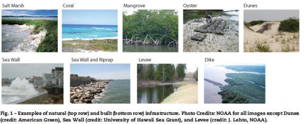 Unlocking the Value in Natural and Hybrid Coastal Infrastructure