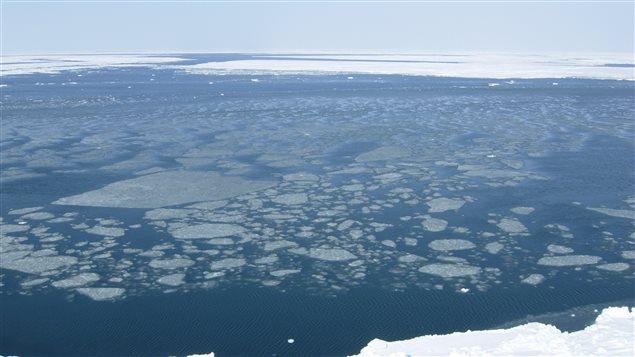 Beaufort sea ice