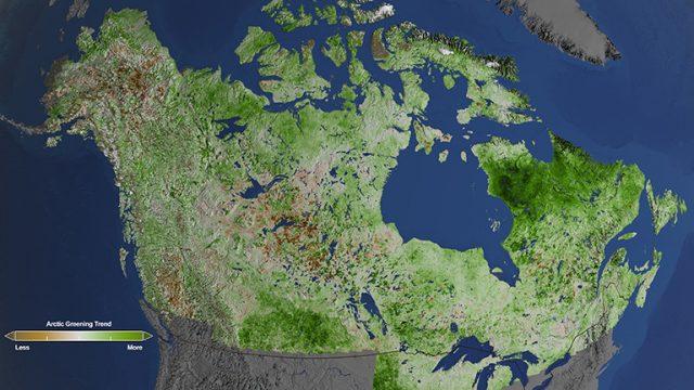 Landsat Study Reveals Greening Across North America's Arctic