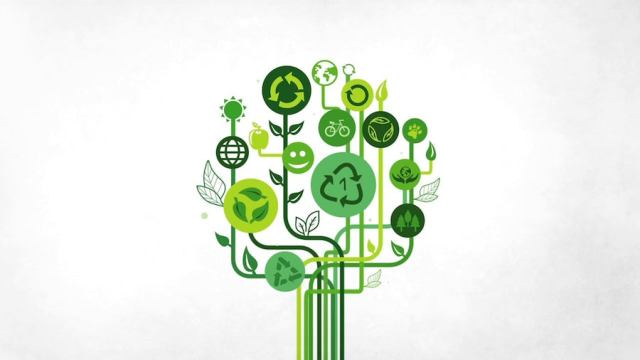 The latest eco-apps to help guide a more sustainable lifestyle