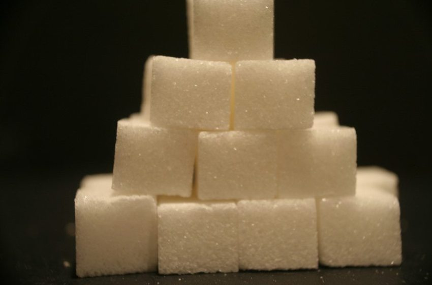 Eroding Trust in Science: The Implications of Big Sugar's Lies