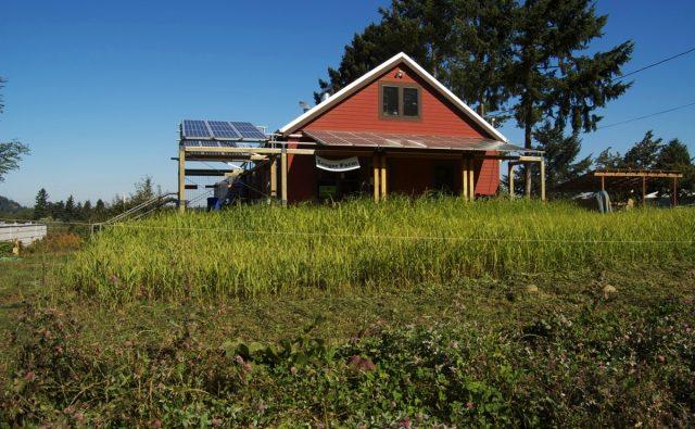 Solar Farm, Solar Barn
