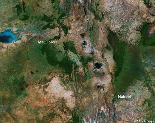 Reforestation not yet taking hold in Kenya