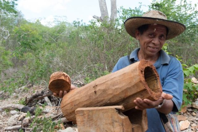 Beekeeping in the Riviera Maya stretches back to antiguity