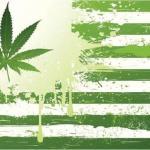legalize marijuana cannabis