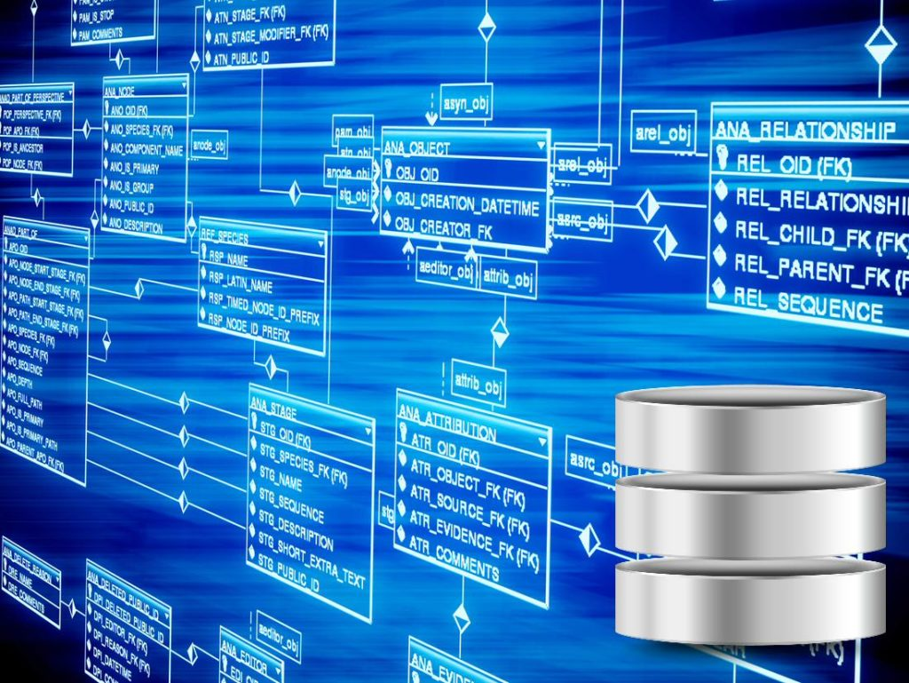 privacy information data identity