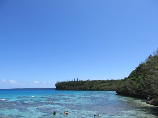 The snorkeling on Lifou was excellent